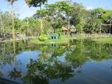 Zoo do Centro de Informações de Guerra na Selva, Manaus, AM