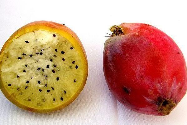 Cápsula é manipulada com base em fruta típica do nordeste