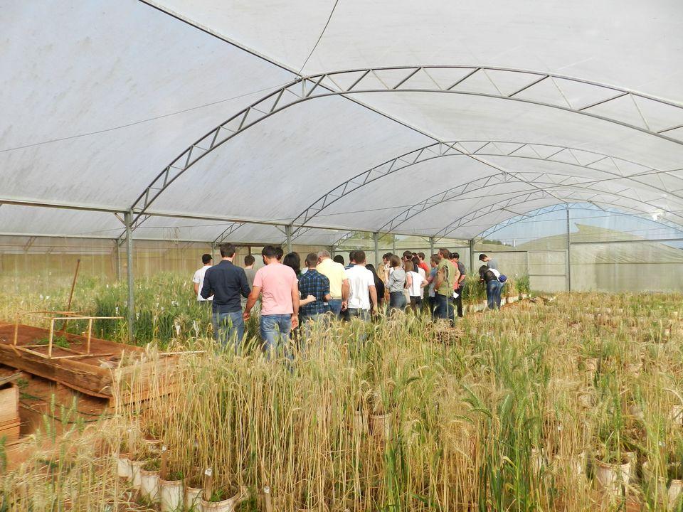 Futuros agrônomos conhecem instalações da Embrapa-Trigo