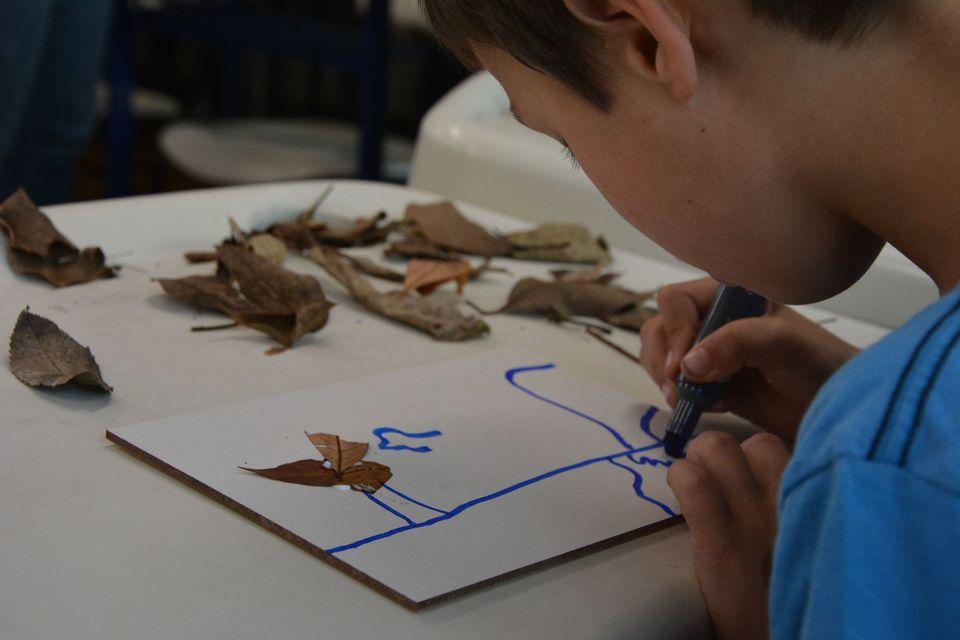 Dia da Árvore é tema do 3º Encontro de Educação Ambiental