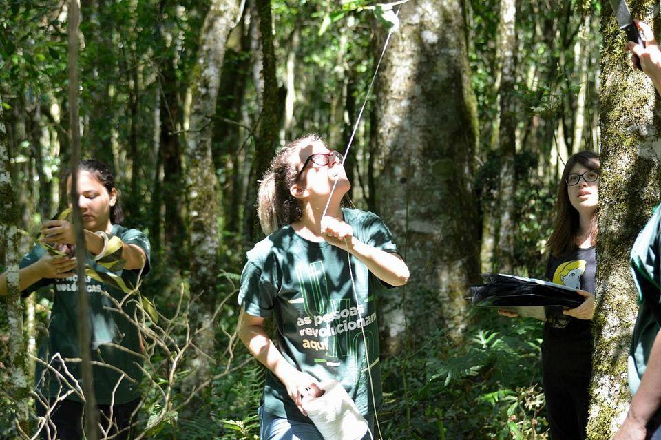 Floresta Nacional completa 50 anos com programação especial na Unochapecó