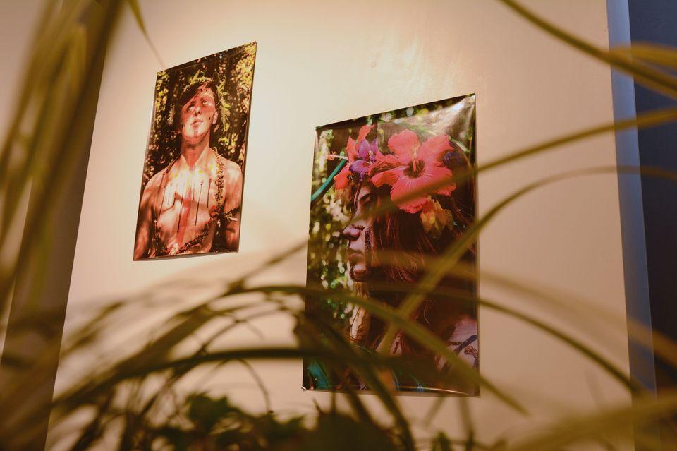 Nova exposição da Unochapecó retrata a realidade local por meio de plantas